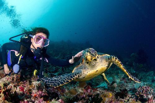 澳大利亚旅游局发布101种不同的澳洲度假方式