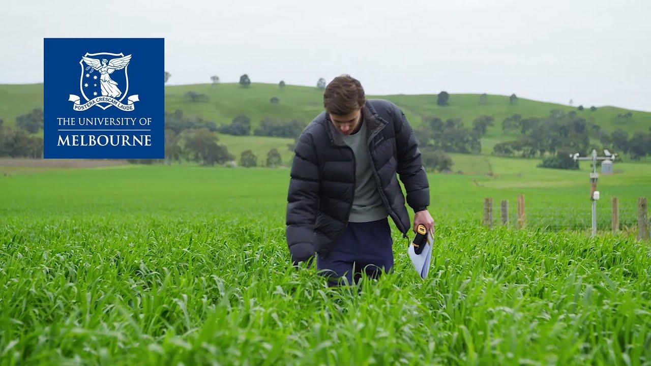 澳洲新晋移民专业-农学(Agriculture)详解:各大学排名、优势及就业前景!