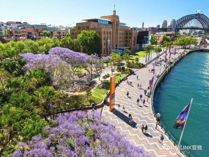 刚刚消息!新州明年初将带回留学生!谈判正在进行!悉尼人崩溃:学生再不回来真活不下去了...